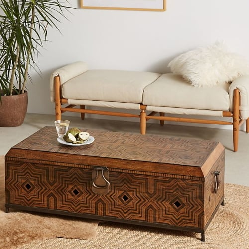 Tanja Trunk Coffee Table