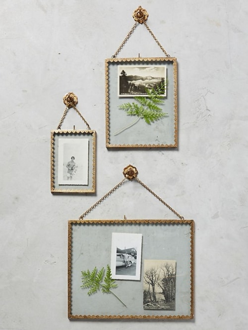 hanging frames with pictures and ferns