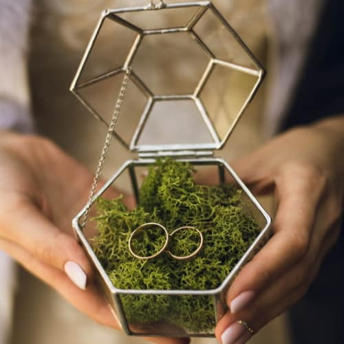 glass ring trinket box with moss